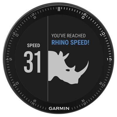 Garmin Fnix® 3 Sapphire - Gray With Metal Band
